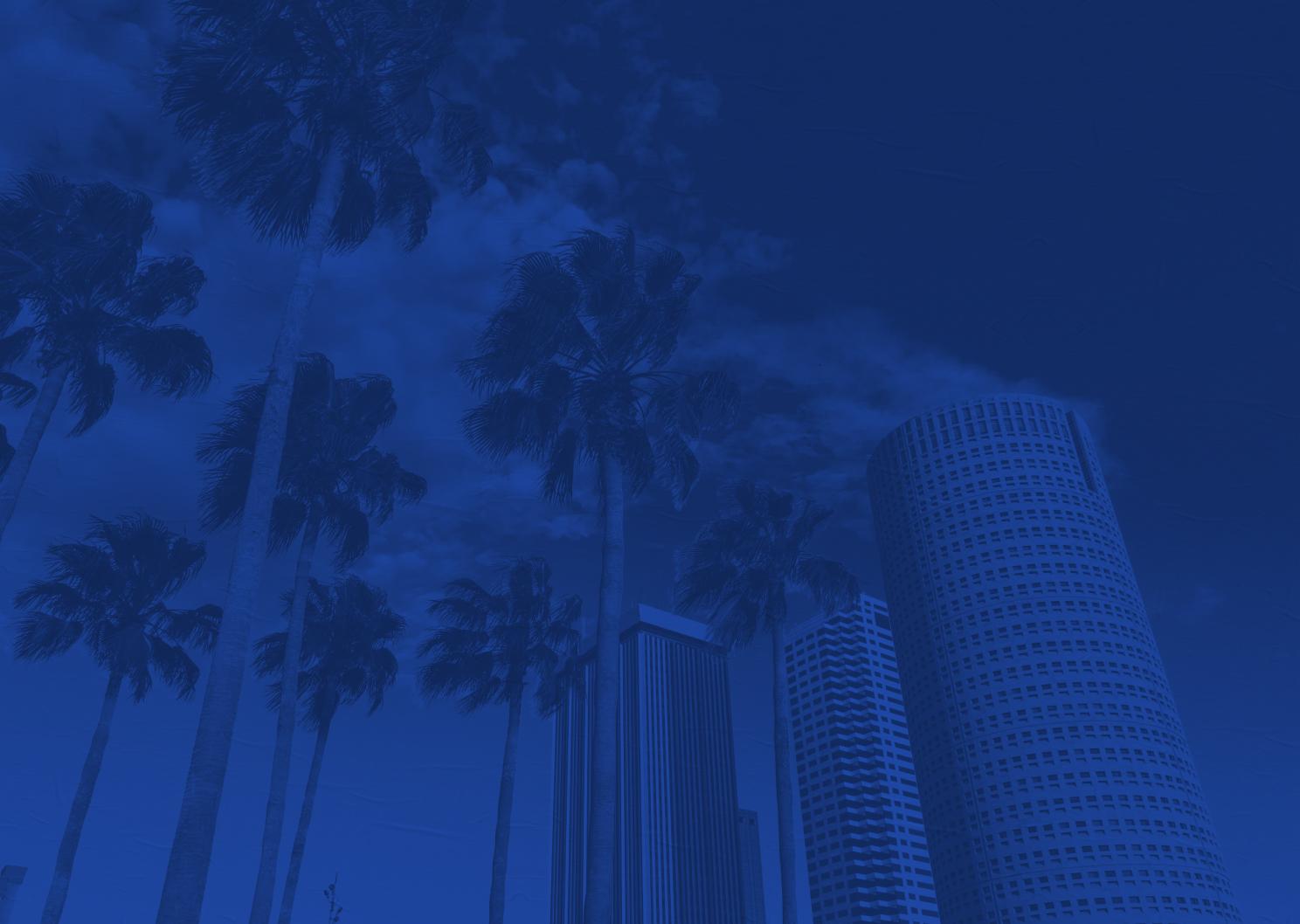 Tampa Bay BG